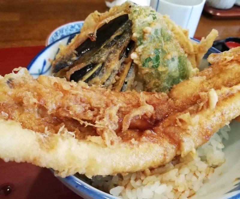 食レポ】松戸 二十世紀が丘「天乙」で あなご天丼ランチ   旅と飛行機